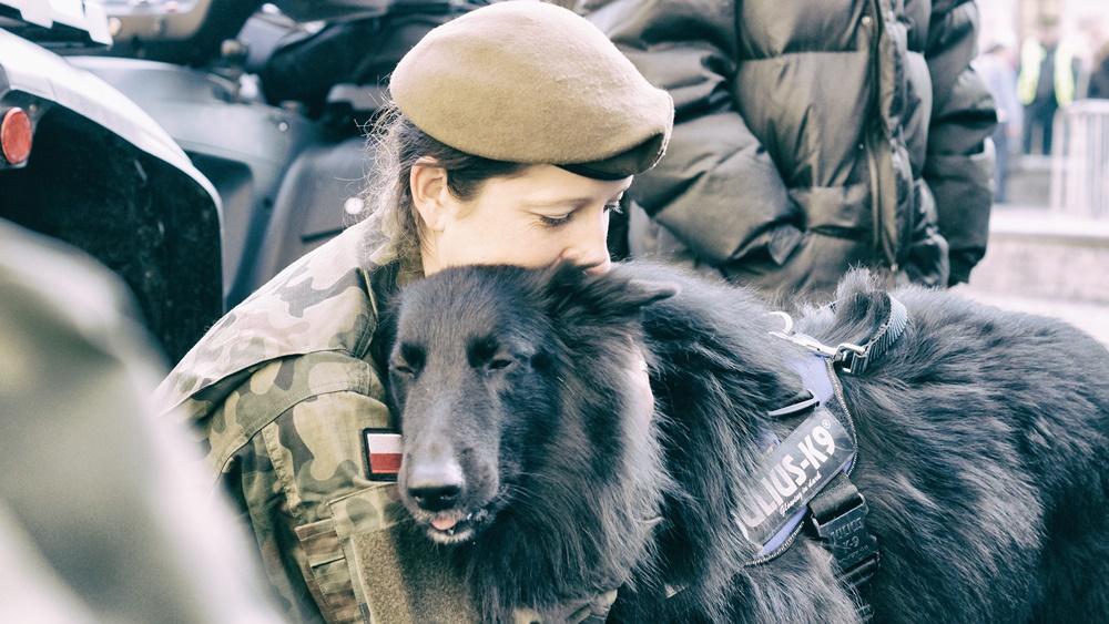 """Psy będą """"służyć"""" w 13. Śląskiej Brygadzie Obrony Terytorialnej"""