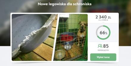 Trwa zbiórka pieniędzy na rzecz schroniska dla zwierząt w Katowicach