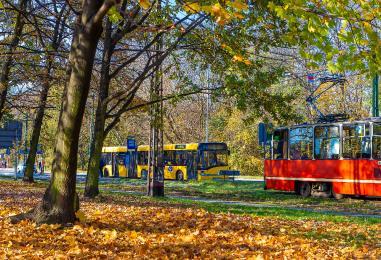 11 listopada: W poniedziałek jak w niedzielę. Duże zmiany w komunikacji miejskiej