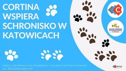 """Weź udział w akcji """"Lajk"""" i wesprzyj katowickie schronisko!"""