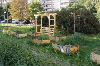 W Katowicach powstały cztery ogrody społeczne